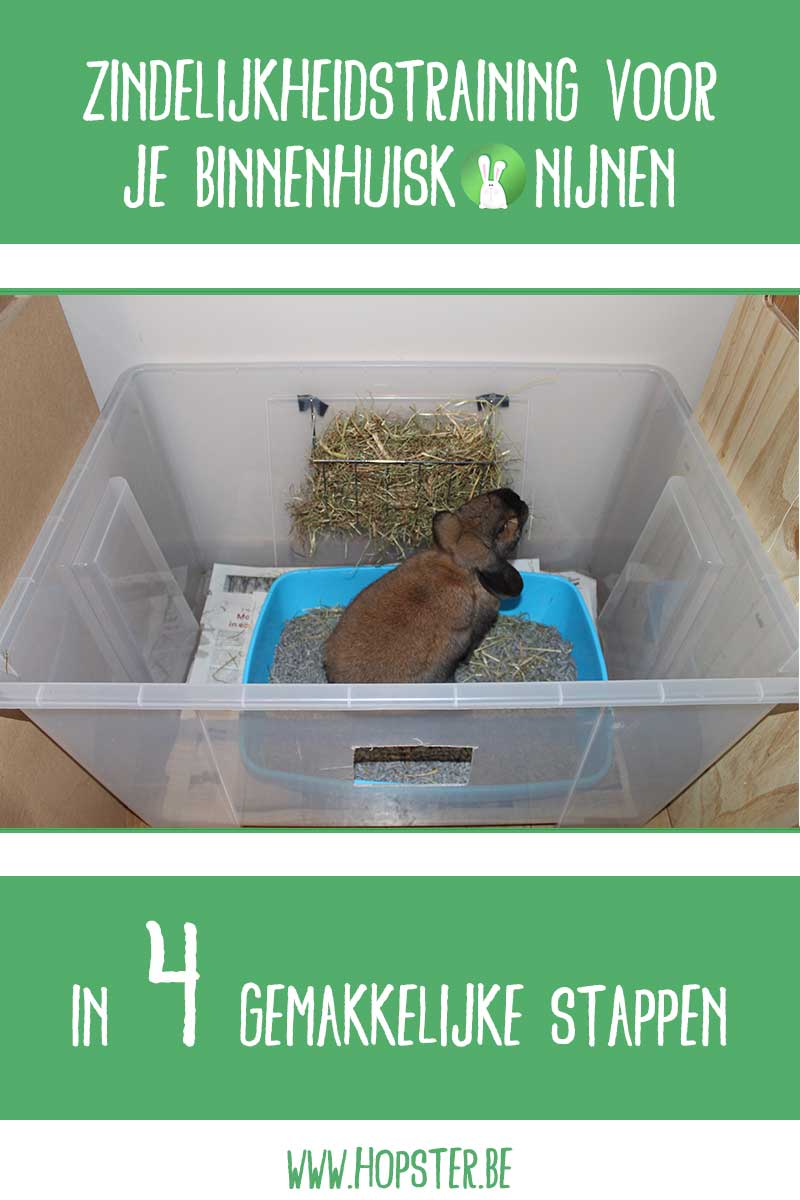 Zindelijkheidstraining | Konijnenadviesbureau Hopster