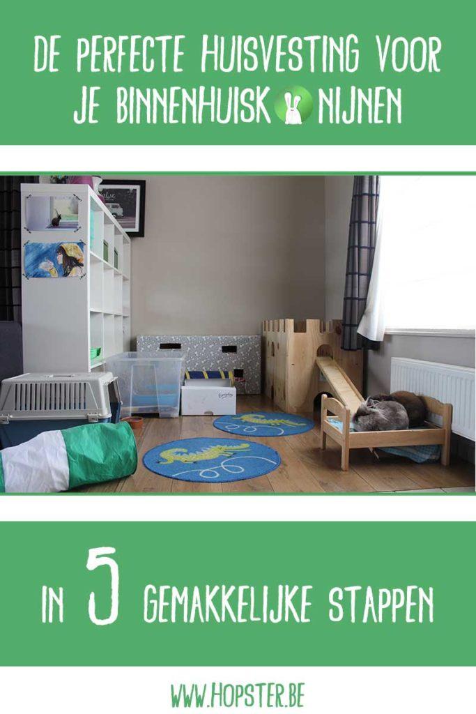 Perfecte Huisvesting | Konijnenadviesbureau Hopster