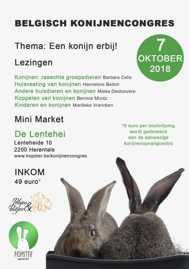 Flyer Konijnencongres 2018