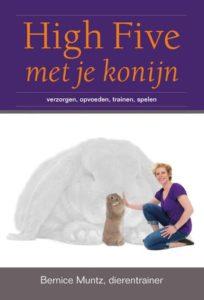 High Five met je konijn | Konijnenadviesbureau Hopster