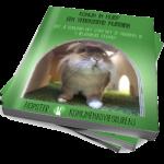 Konijn in huis? Een verrassend huisdier! | Konijnenadviesbureau Hopster