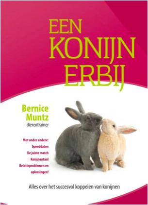 Een konijn erbij | Konijnenadviesbureau Hopster