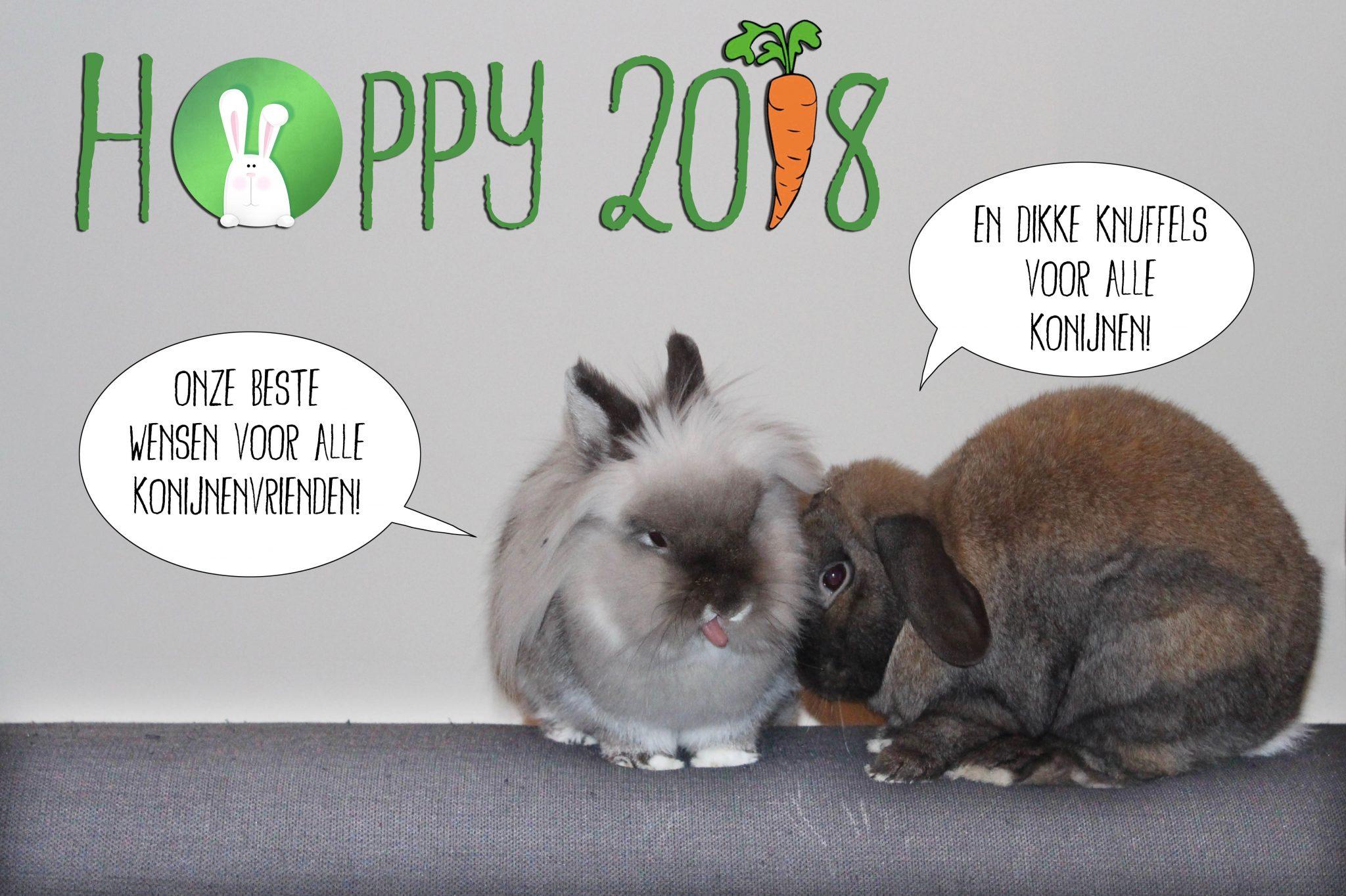 Hoppy 2018 | Konijnenadviesbureau Hopster
