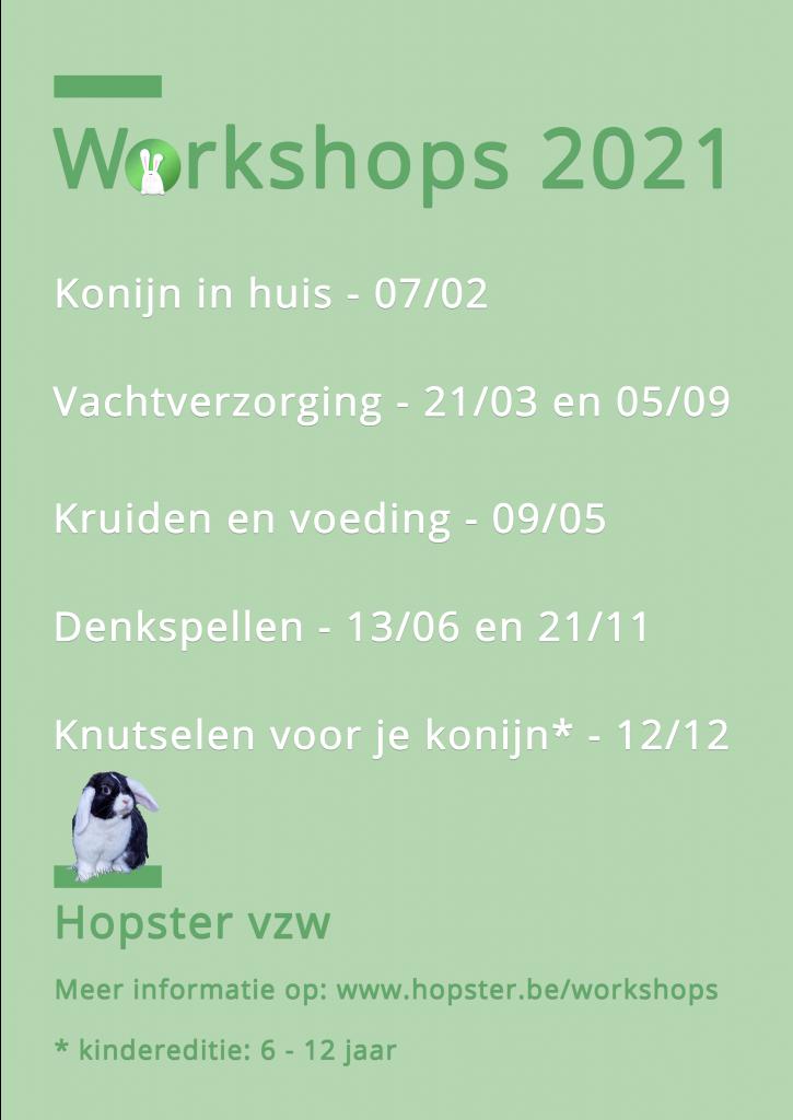 Agenda Workshops 2021 | Konijnenadviesbureau Hopster