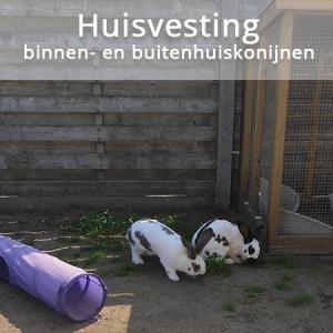 lezing Huisvesting binnen- en buitenhuiskonijnen | Konijnenadviesbureau Hopster